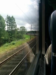 Langer Zug